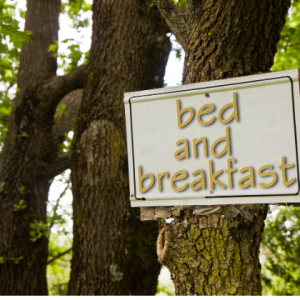 vegan bed and breakfast wooden sign on a tree, vegan hotels, b & B and guest houses in the UK